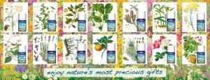 VedAroma plants