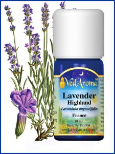 lavender-highland-essential-oil
