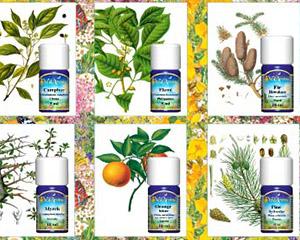 profesionalna aromaterapija