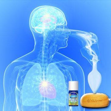 Šta je Aromaterapija