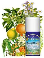 prof aromaterapija 3